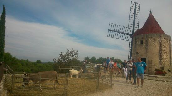 Moulin de daudet 21 sept 2014 1